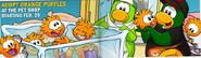 OrangePuffle3