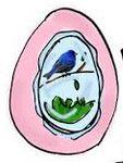 File:Egg3.jpg