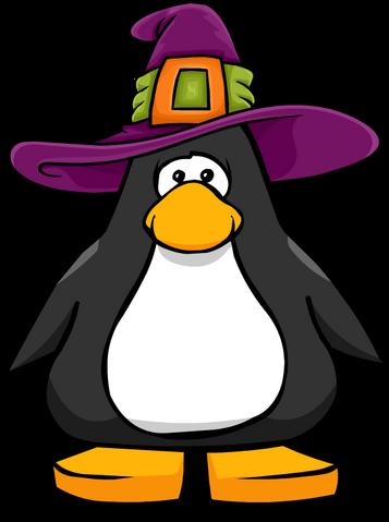 File:Witchhatonapc.png