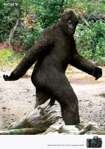 File:Bigfoot-tastic!.jpg