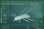 1 bug