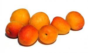 799495 apricots 1