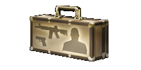 Golden case