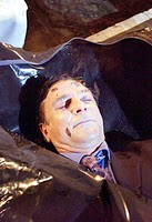 Richard hillman dead