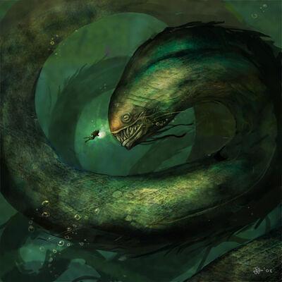 Muraenidae of the Oceans