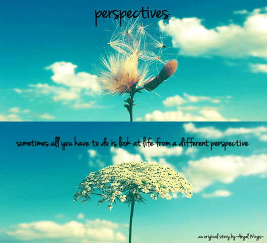 File:Perspectives.jpg