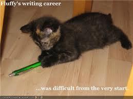 File:Fluffy career.jpg