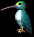C3hummingbird