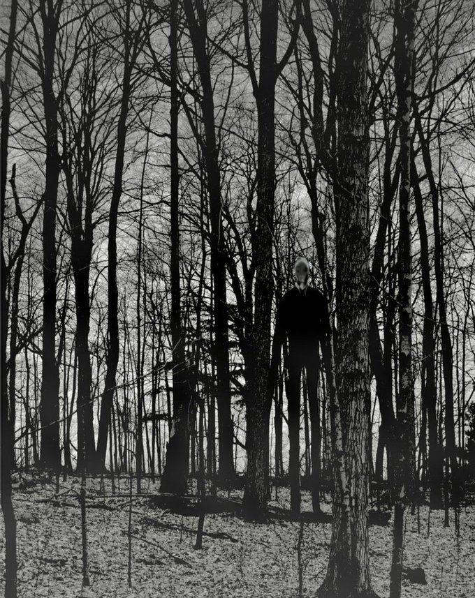 image slendermaninwoodsjpg creepypasta wiki