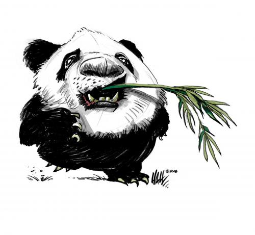 File:China panda 311225.jpg