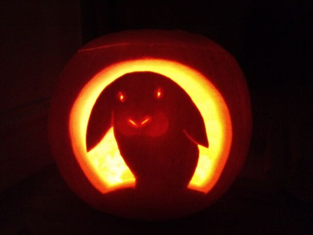 File:Rabbit-halloween-jacko-lantern.jpg
