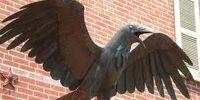 Raven Ranger