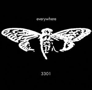 File:Cicada.jpg