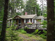 House-In-The-Woods-2
