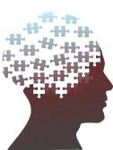 File:Brain Puzzle.jpg