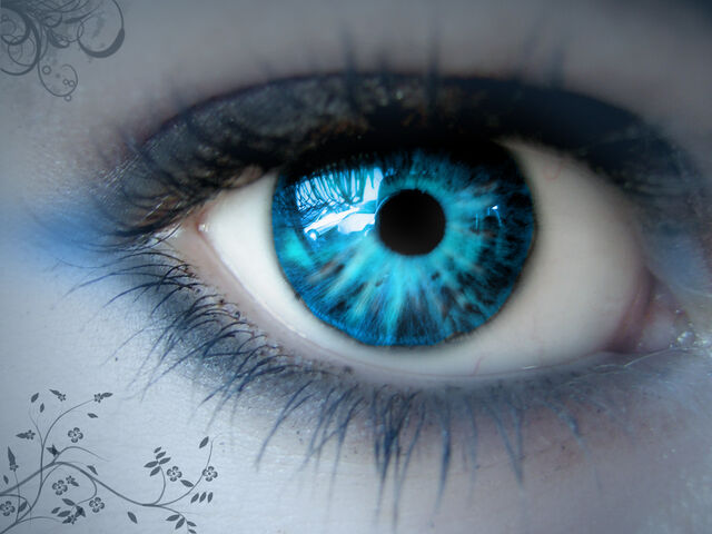 File:Blue Eye.jpg