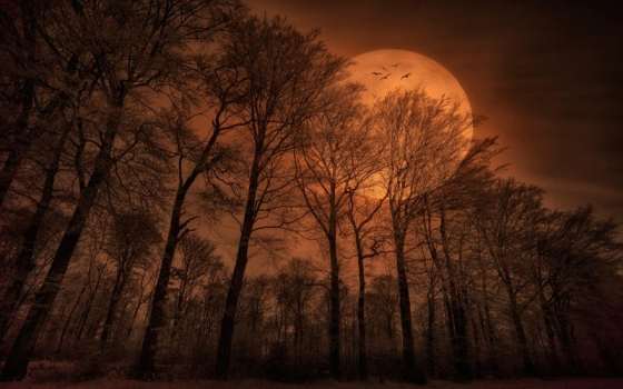 File:Golden moon light mysterious dark moon.1.jpg