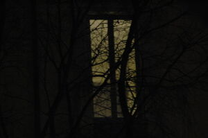 Dark window by ickyfrog-d35i5fm