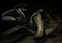 File:Snake man.jpg
