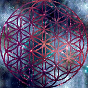 Flower of life by ludi vine-d4kcy6j