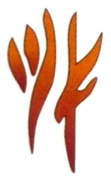 Huppla Pasa Tisc Sw logo