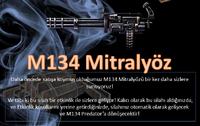 M134 turkey poster