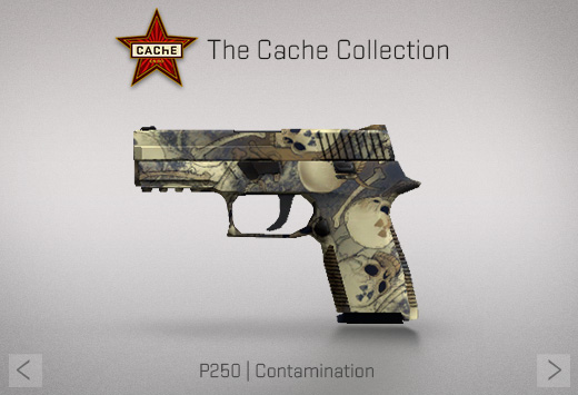 File:Cache p250.png