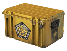 File:Chroma Weapon Case.png