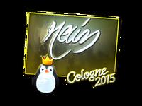 Csgo-col2015-sig rain foil large