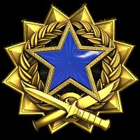 Service medal 2017 lvl3 large