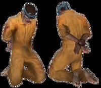 Hostage variantb