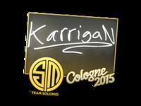 Csgo-col2015-sig karrigan large