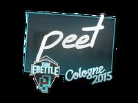 Csgo-col2015-sig peet large
