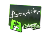 Csgo-col2015-sig bondik large