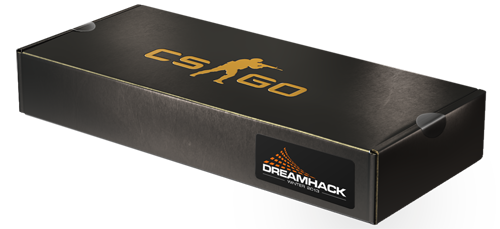 File:Dreamhack-souvenir.png