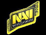 Csgo-kat2015-navi large