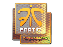 File:Csgo-dreamhack2014-fnatic holo large.png