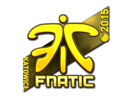File:Csgo-kat2015-fnatic gold-20150306.png