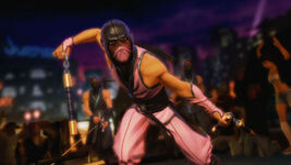 Ninja roof-620x