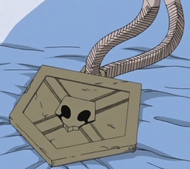 Ichigo Substitue Soul Reaper Badge