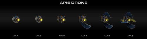 Apis Drone