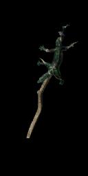 Lizard Staff