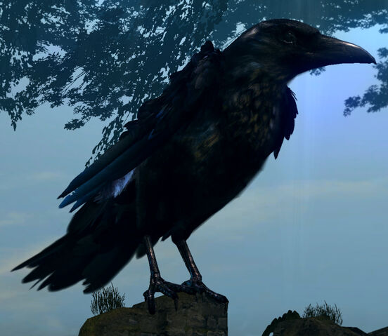 File:Giant crow02.jpg