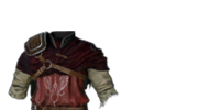 Falconer Armor