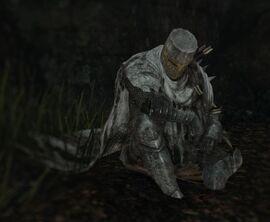 Dark Souls  Sotfs Ng Build