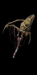 File:Bone Staff.png