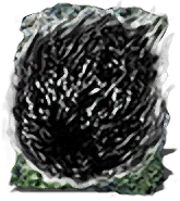 Dark Orb.png