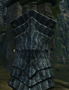Havel shield