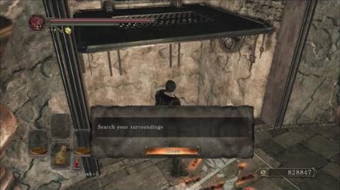 Dark Souls 2 DLC Item Location Guide Hollow Skin