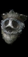 Watcher's Shield